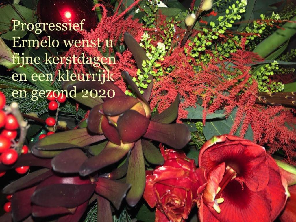 Fractie en bestuur van Progressief Ermelo wensen u fijne kerstdagen en een kleurrijk en gezond 2020